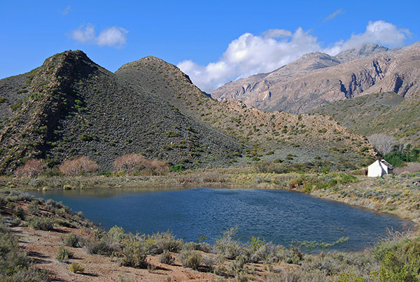 The Swartberg Mountains tower over the narrow valley linking Laingsburg and the Gamkapoort Dam