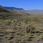 Bloukrans Pass, Calvinia