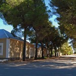 The shady tree-lined streets in Loxton