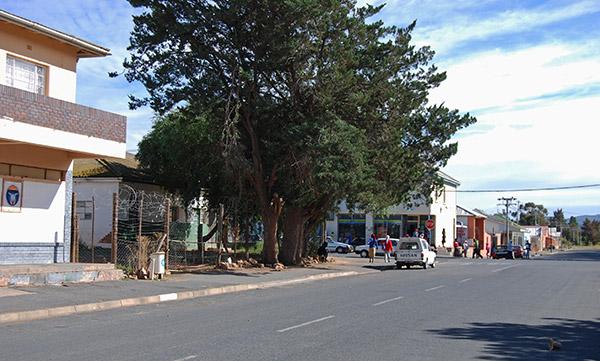 Touws River street scene
