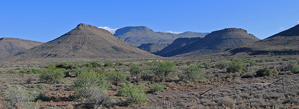 The Nuweveld Mountains from the Rest Camp