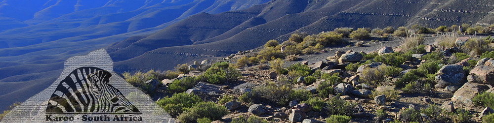 The Karoo, South Africa