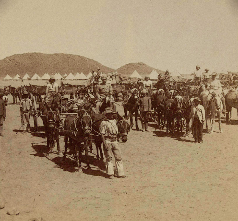 British Army transport wagons at De Aar January 1900