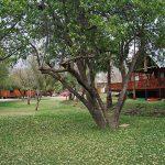 Riverside Accommodation at Orania