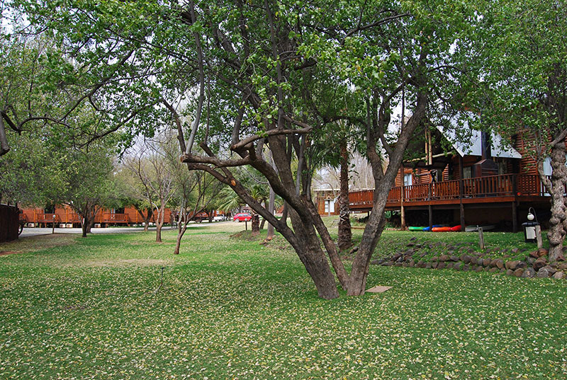 Riverside Accommodation at Orania
